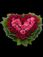 Cuore di Rose rosse e Rose rosa contornate da foglie verdi.