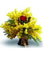 mimosa con una rosa rossa al centro