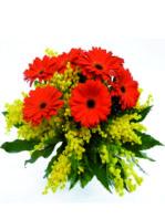 Bouquet di gerbere e mimosa