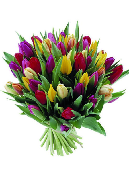 Bouquet di tuliani