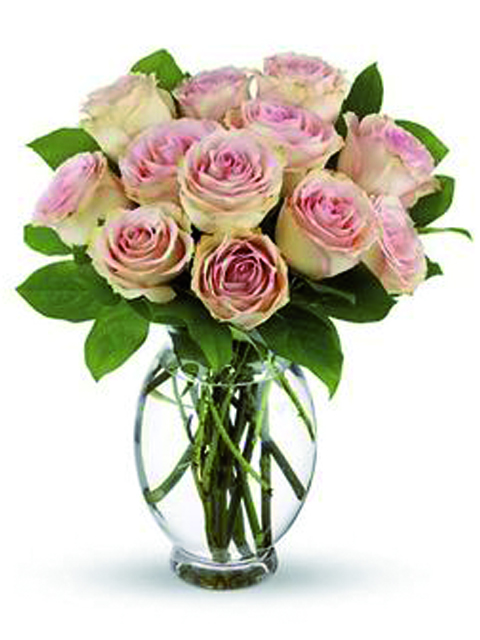12 rose rosa chiaro.