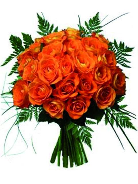 24 rose arancioni.