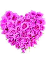 Cuore di rose rosa.