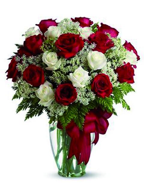 Rose rosse e bianche.