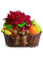 cesto di frutta con stella di natale